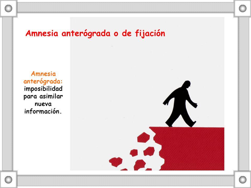 Amnesia anterógrada: imposibilidad para asimilar nueva información.