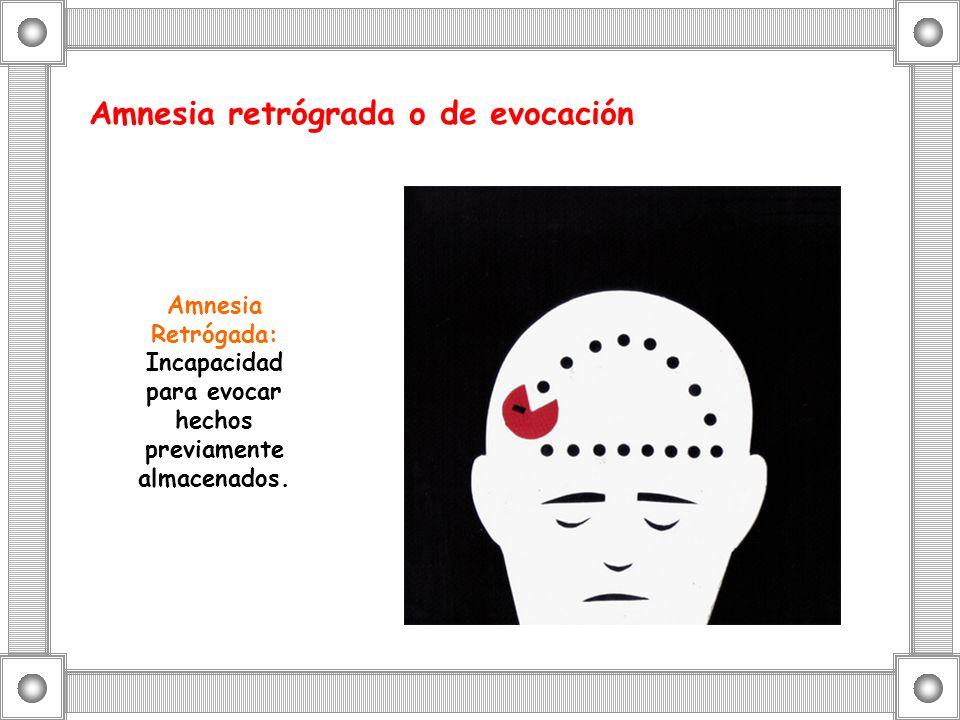 Amnesia retrógrada o de evocación