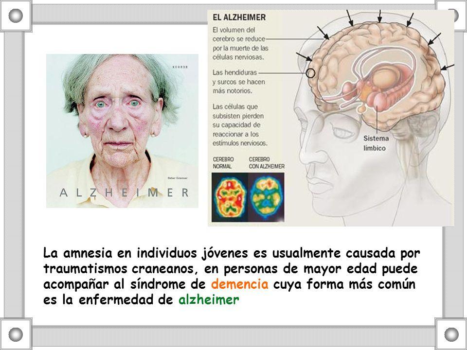 La amnesia en individuos jóvenes es usualmente causada por traumatismos craneanos, en personas de mayor edad puede acompañar al síndrome de demencia cuya forma más común es la enfermedad de alzheimer