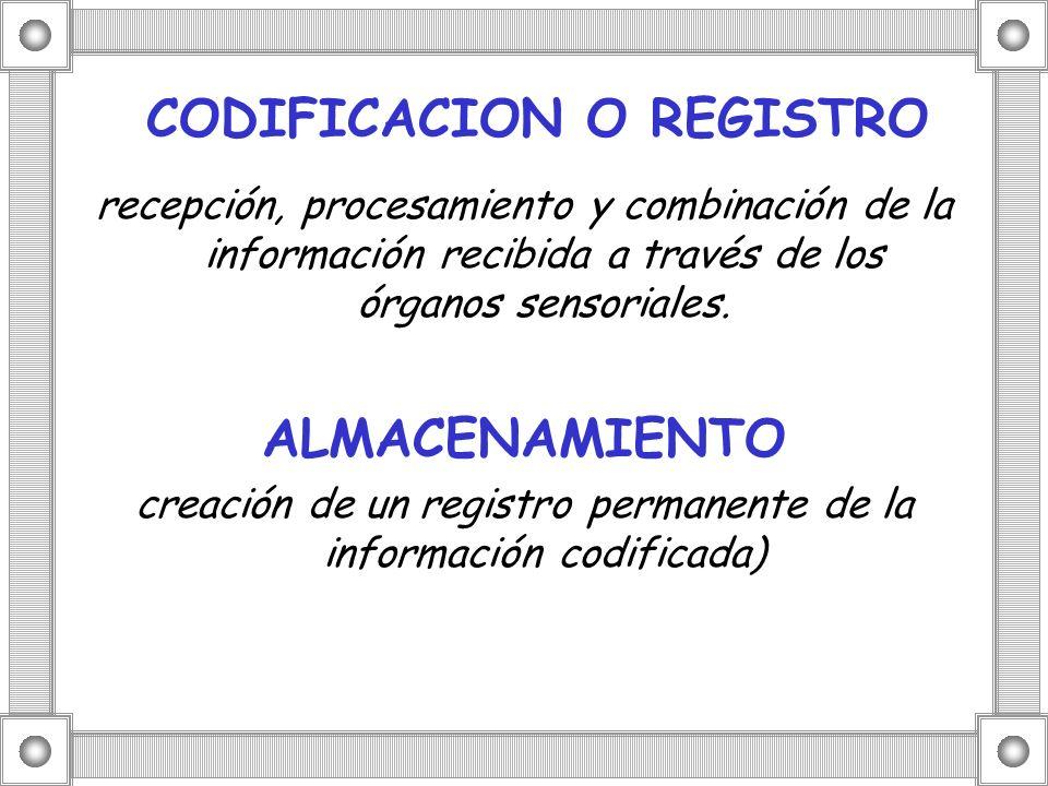 CODIFICACION O REGISTRO