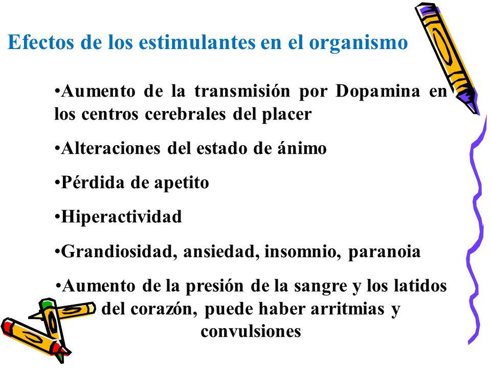 Efectos de los estimulantes en el organismo