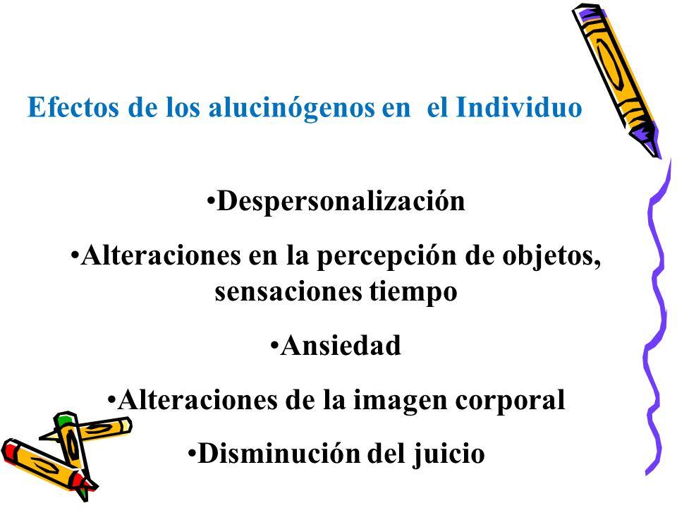 Efectos de los alucinógenos en el Individuo