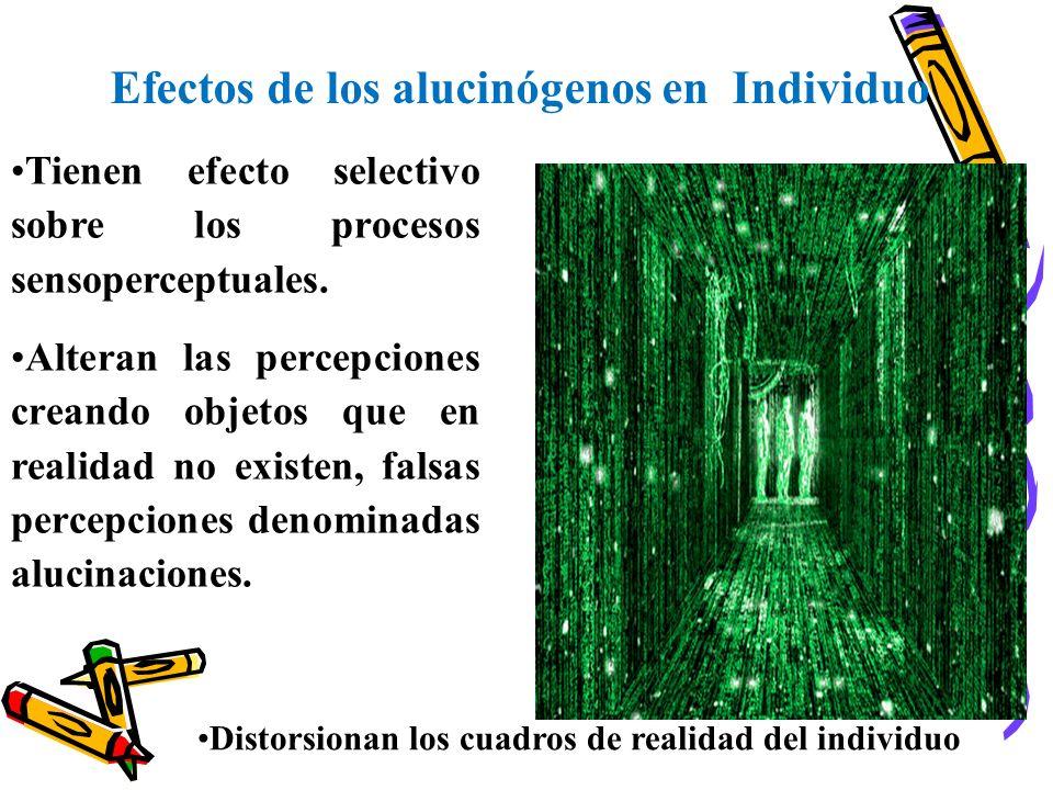 Efectos de los alucinógenos en Individuo