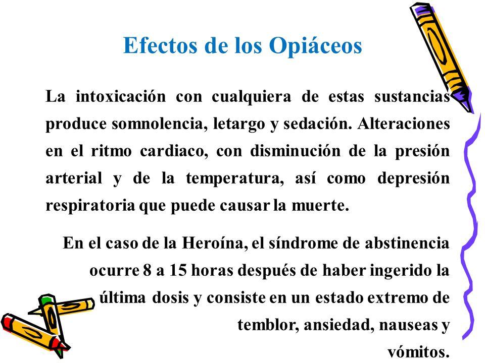Efectos de los Opiáceos