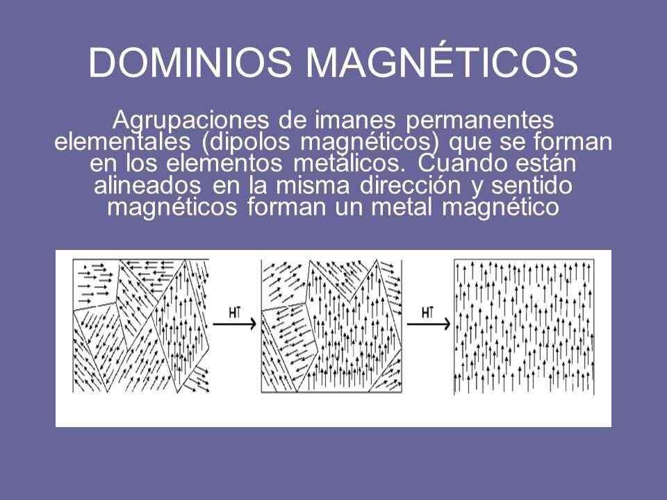 DOMINIOS MAGNÉTICOS