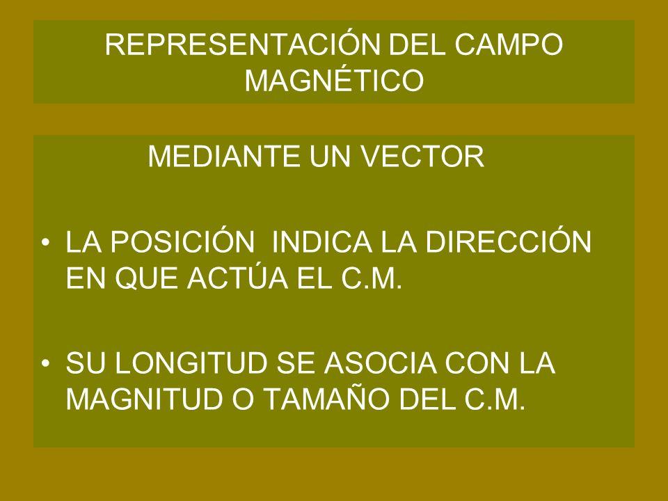 REPRESENTACIÓN DEL CAMPO MAGNÉTICO