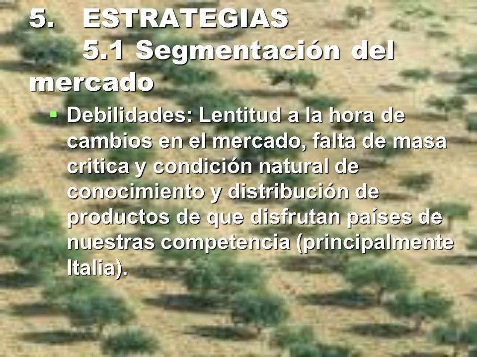 5. ESTRATEGIAS 5.1 Segmentación del mercado