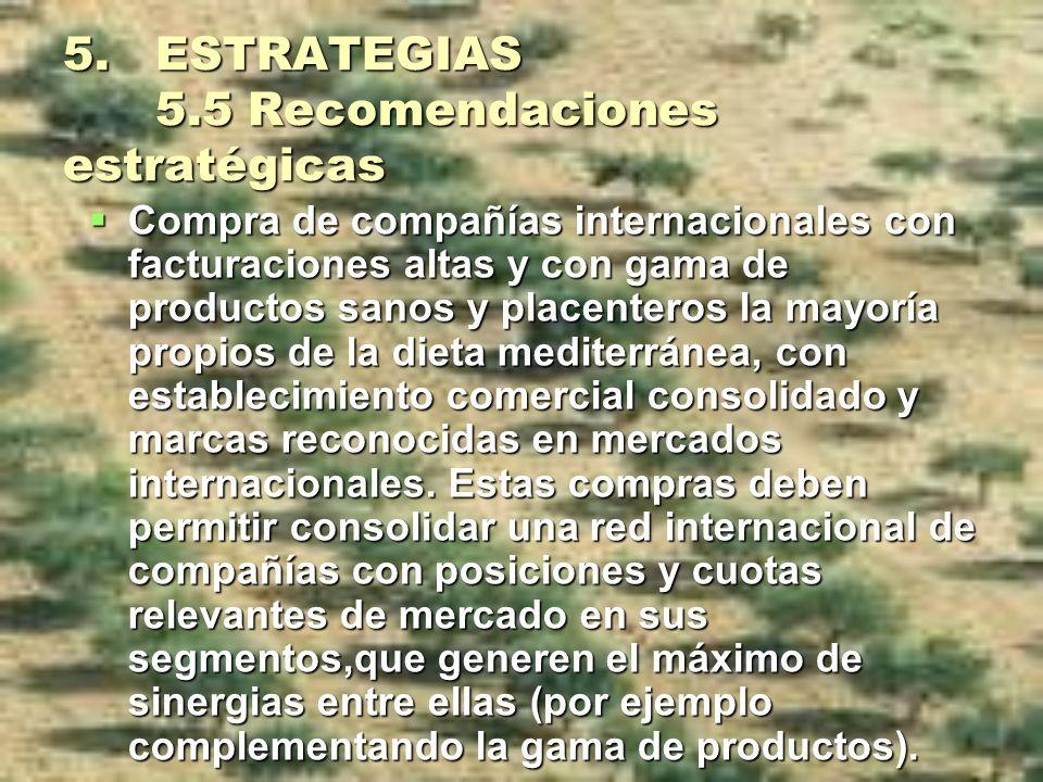 5. ESTRATEGIAS 5.5 Recomendaciones estratégicas