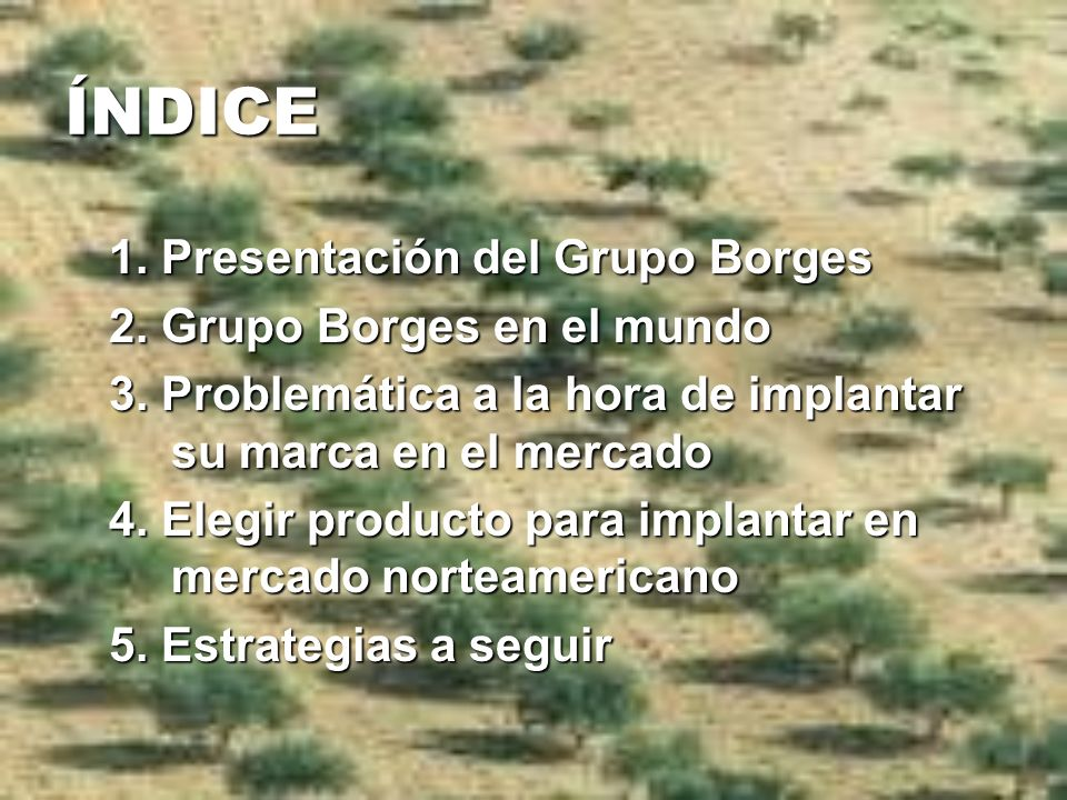 ÍNDICE 1. Presentación del Grupo Borges 2. Grupo Borges en el mundo