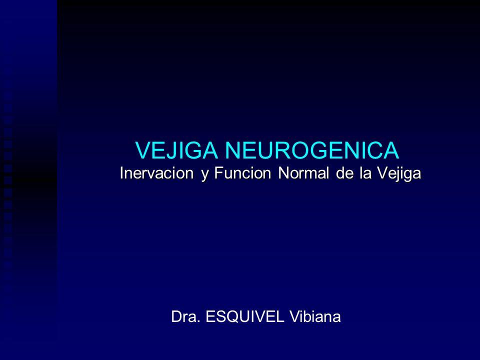 Inervacion y Funcion Normal de la Vejiga