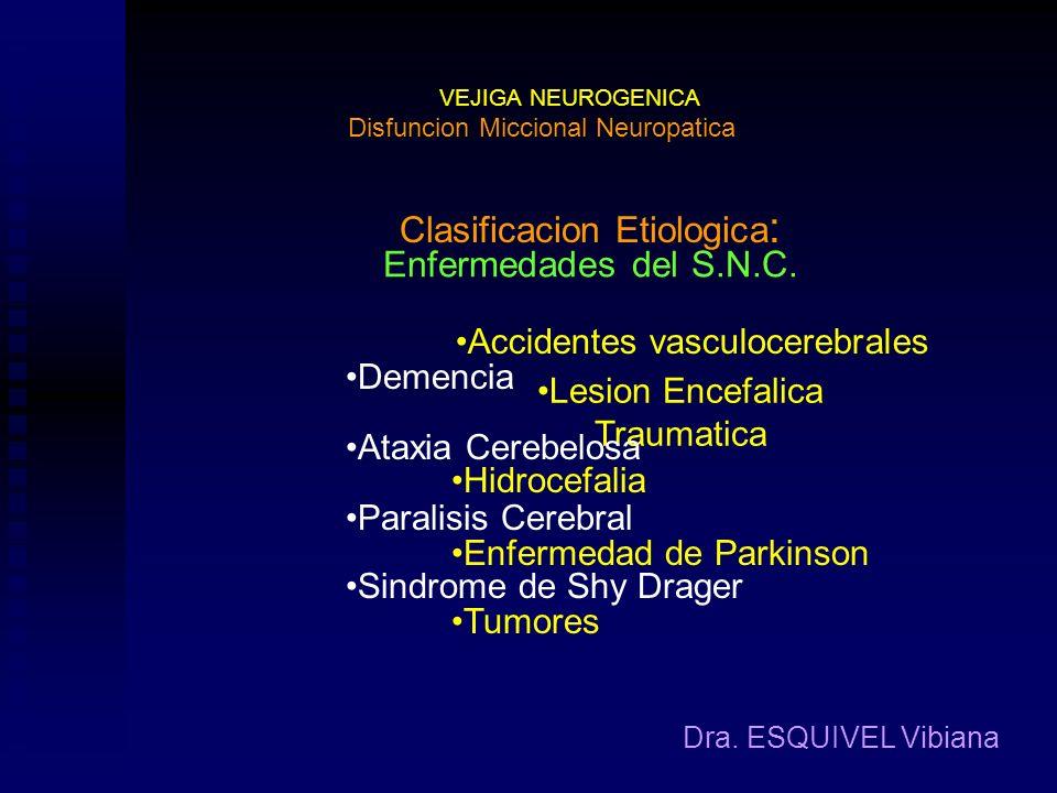 Clasificacion Etiologica: Enfermedades del S.N.C.