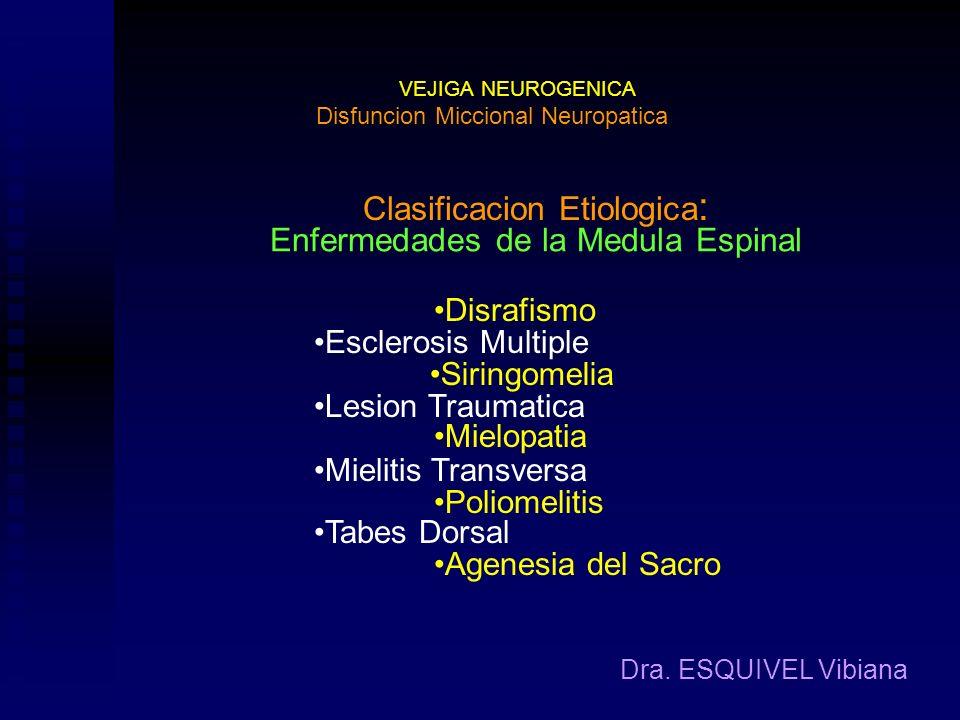 Clasificacion Etiologica: Enfermedades de la Medula Espinal