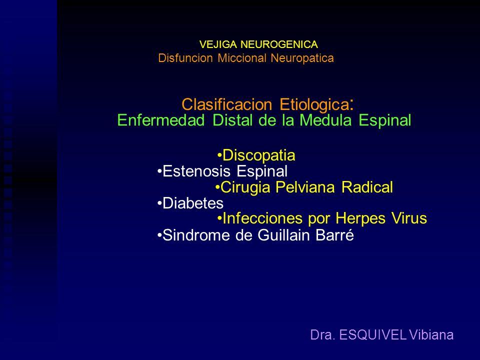 Clasificacion Etiologica: Enfermedad Distal de la Medula Espinal