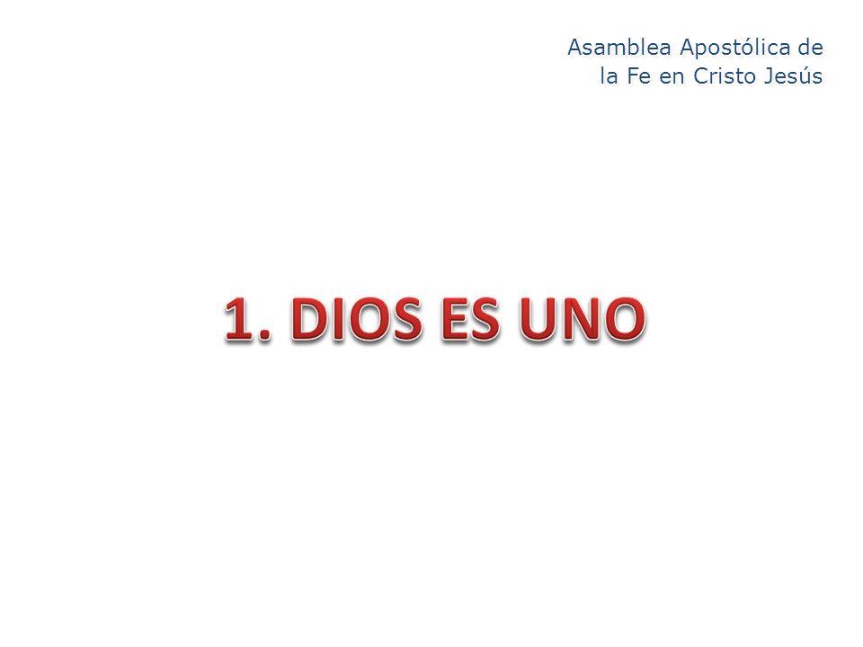 Asamblea Apostólica de