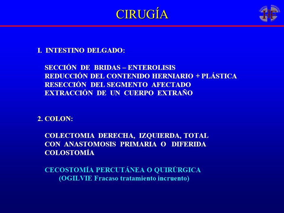 CIRUGÍA I. INTESTINO DELGADO: SECCIÓN DE BRIDAS – ENTEROLISIS