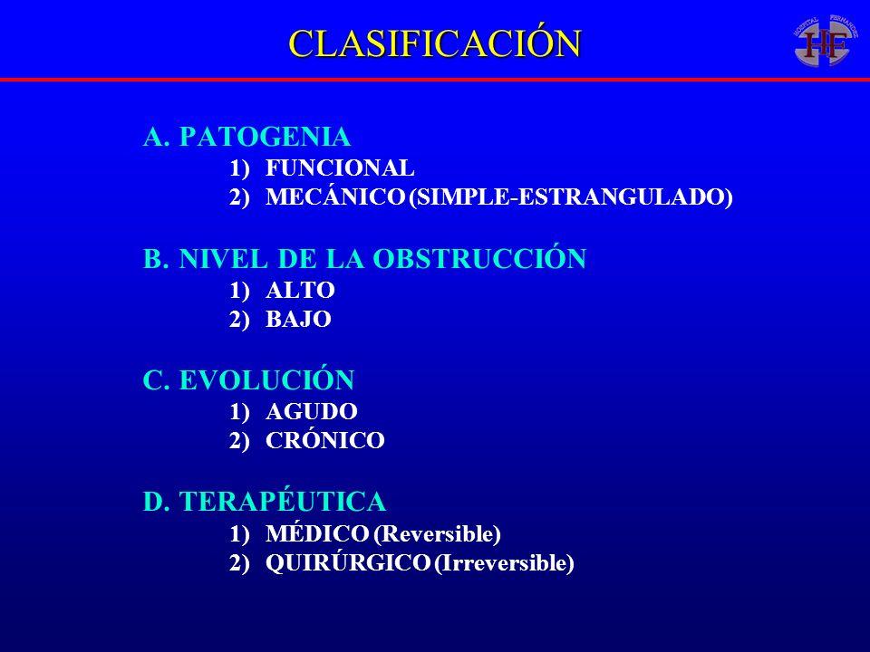 CLASIFICACIÓN PATOGENIA NIVEL DE LA OBSTRUCCIÓN EVOLUCIÓN TERAPÉUTICA