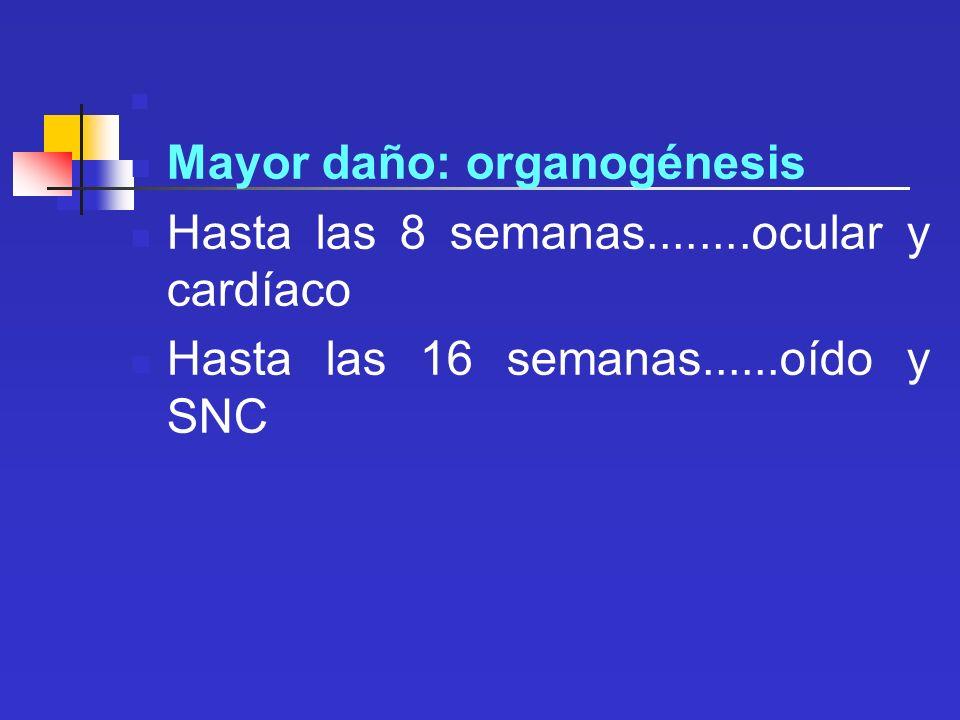 Mayor daño: organogénesis Hasta las 8 semanas........ocular y cardíaco