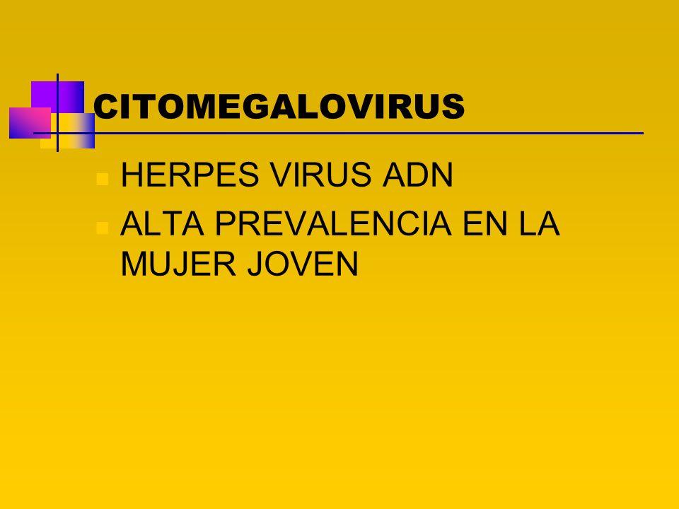 CITOMEGALOVIRUS HERPES VIRUS ADN ALTA PREVALENCIA EN LA MUJER JOVEN