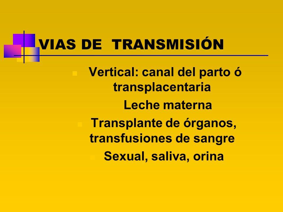VIAS DE TRANSMISIÓN Vertical: canal del parto ó transplacentaria