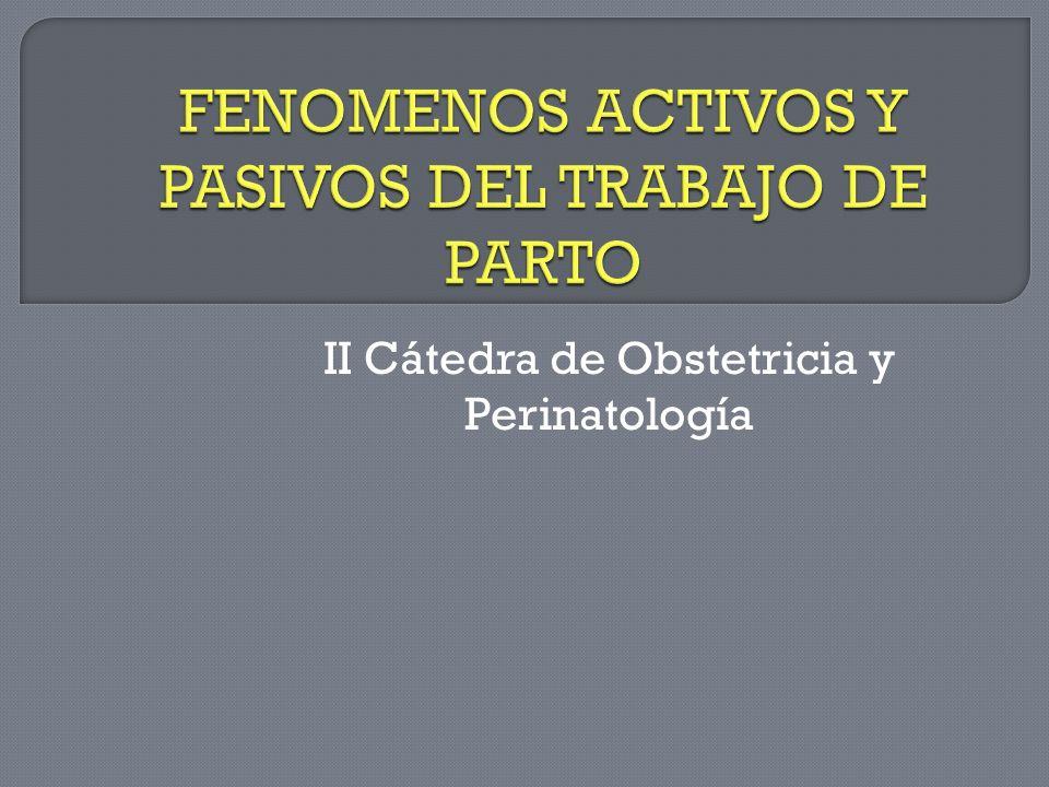 FENOMENOS ACTIVOS Y PASIVOS DEL TRABAJO DE PARTO