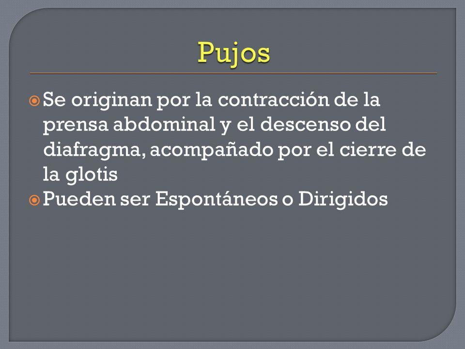 Pujos Se originan por la contracción de la prensa abdominal y el descenso del diafragma, acompañado por el cierre de la glotis.
