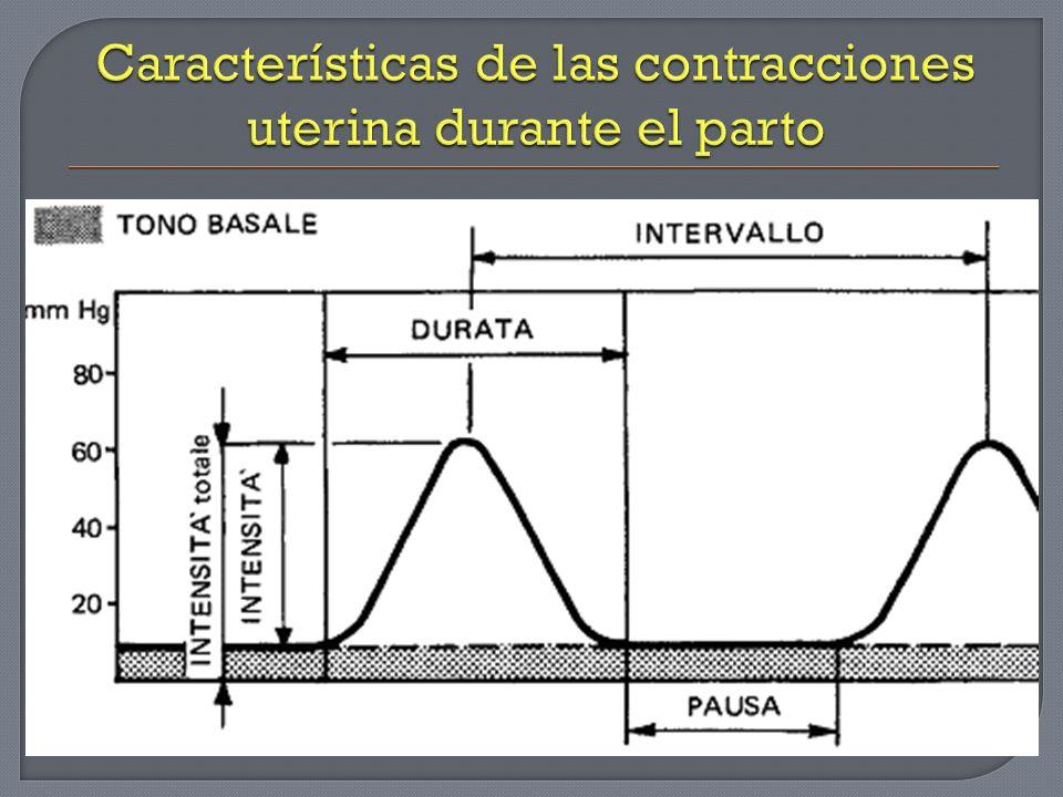 Características de las contracciones uterina durante el parto