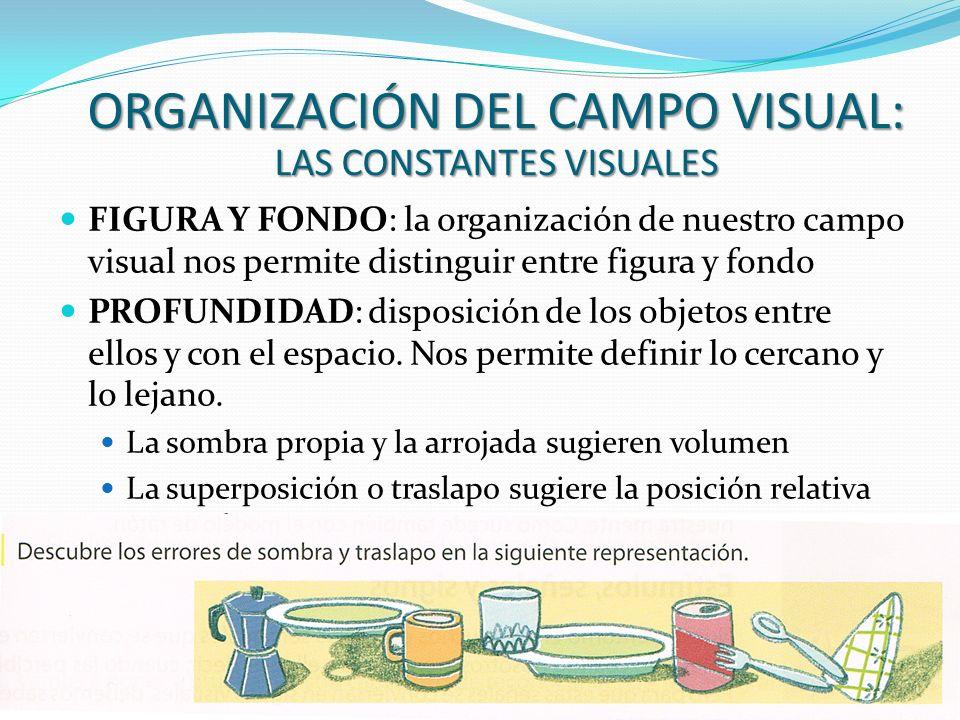 ORGANIZACIÓN DEL CAMPO VISUAL: LAS CONSTANTES VISUALES