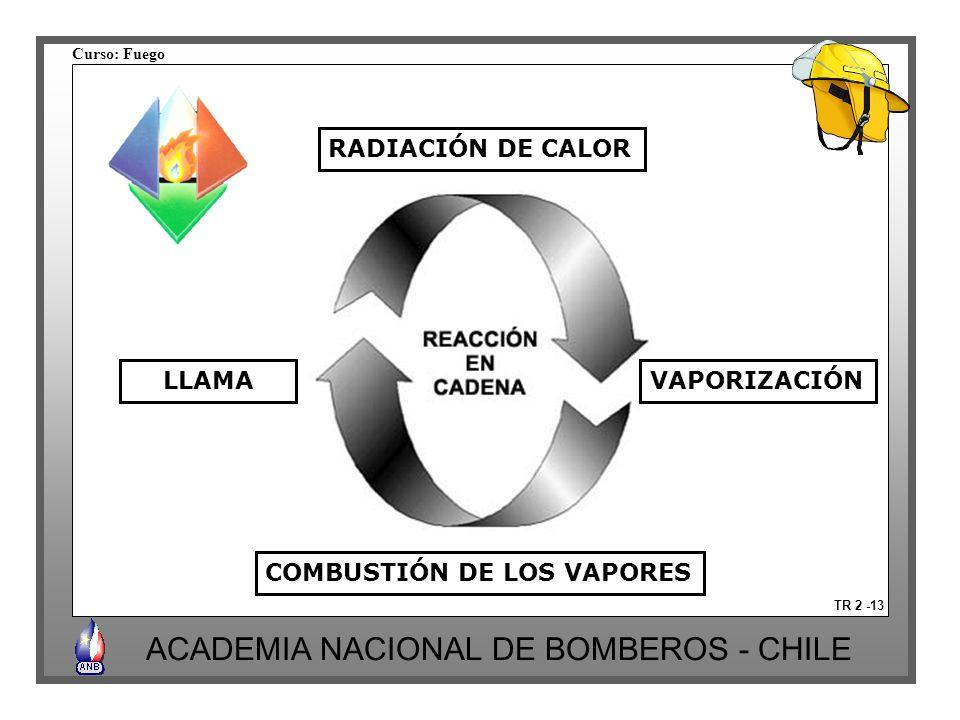 COMBUSTIÓN DE LOS VAPORES