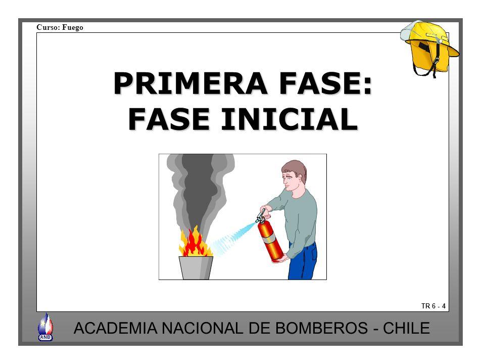 PRIMERA FASE: FASE INICIAL