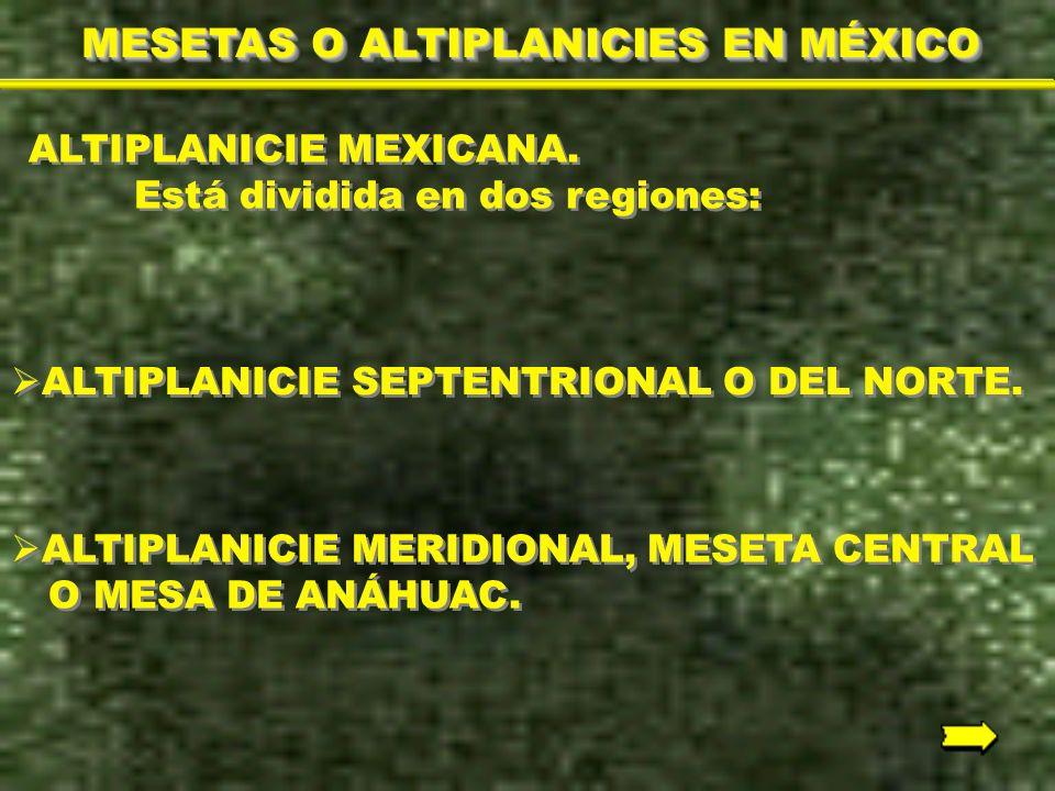 MESETAS O ALTIPLANICIES EN MÉXICO
