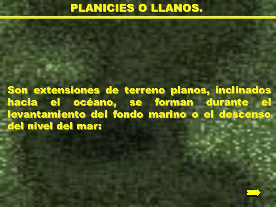 PLANICIES O LLANOS.