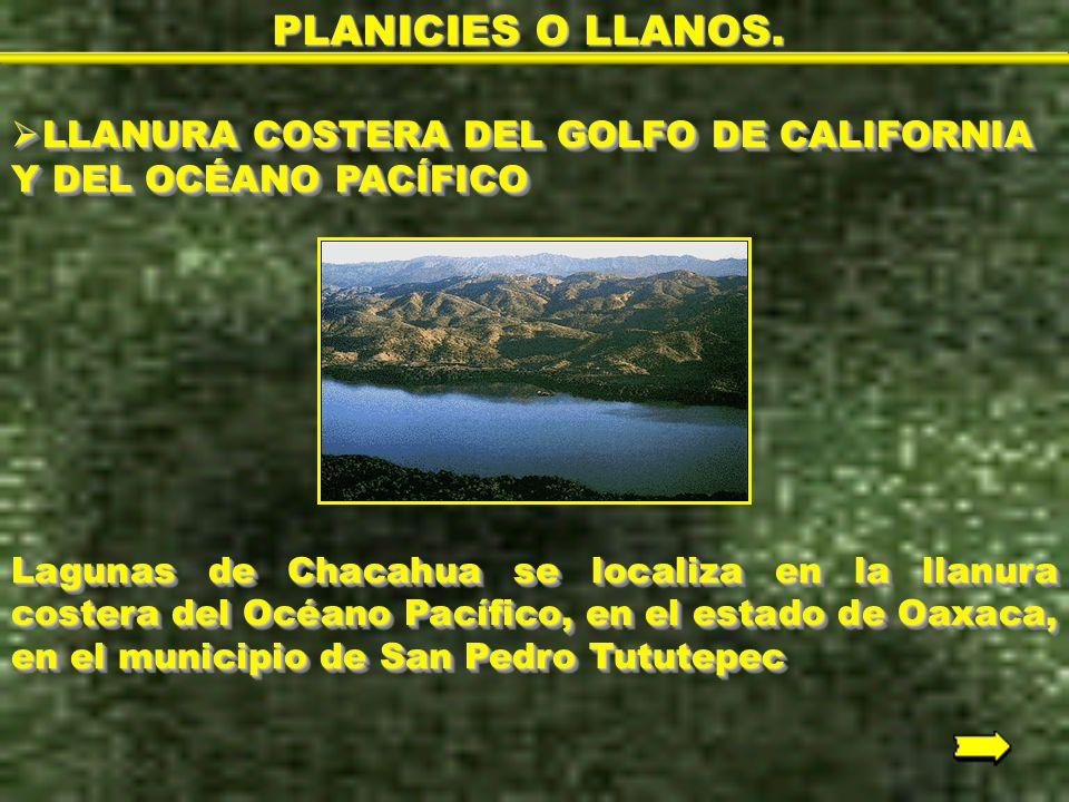 PLANICIES O LLANOS. LLANURA COSTERA DEL GOLFO DE CALIFORNIA Y DEL OCÉANO PACÍFICO.