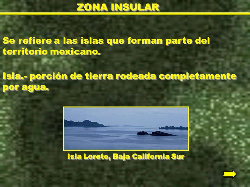 ZONA INSULAR Se refiere a las islas que forman parte del territorio mexicano. Isla.- porción de tierra rodeada completamente por agua.