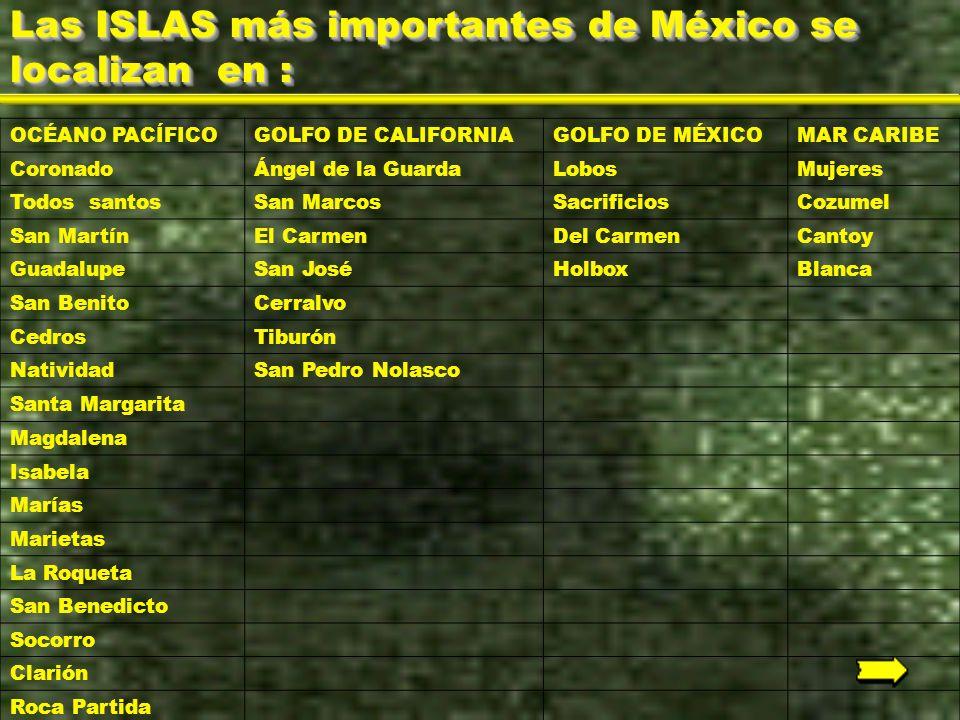 Las ISLAS más importantes de México se localizan en :