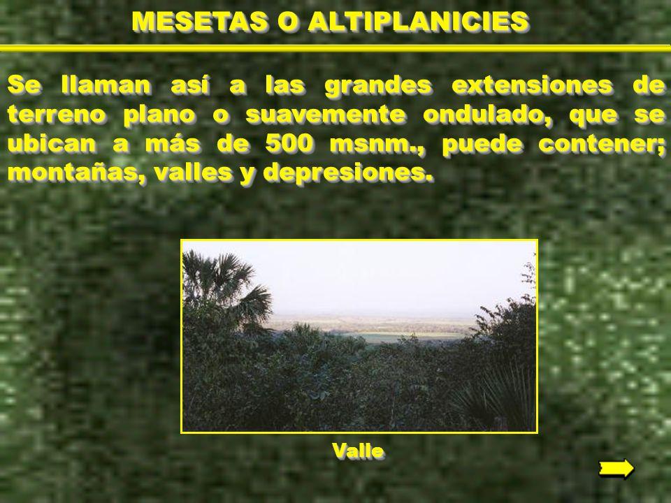 MESETAS O ALTIPLANICIES