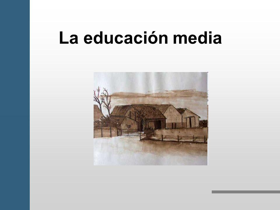 La educación media