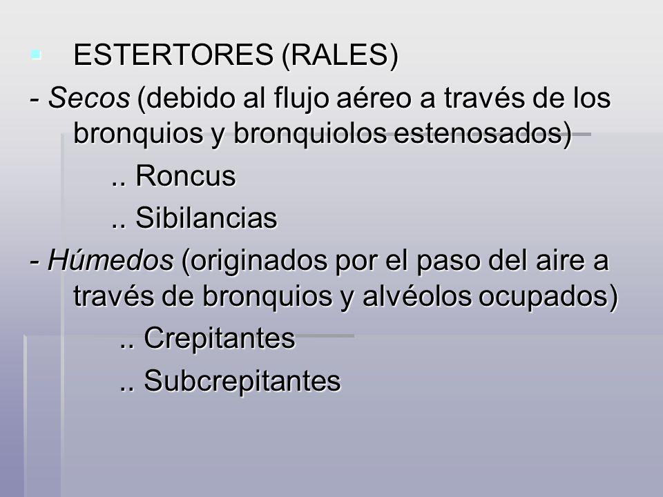 ESTERTORES (RALES)- Secos (debido al flujo aéreo a través de los bronquios y bronquiolos estenosados)