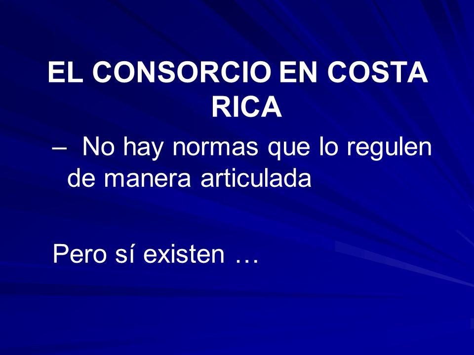 EL CONSORCIO EN COSTA RICA