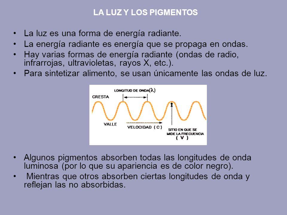 La luz es una forma de energía radiante.