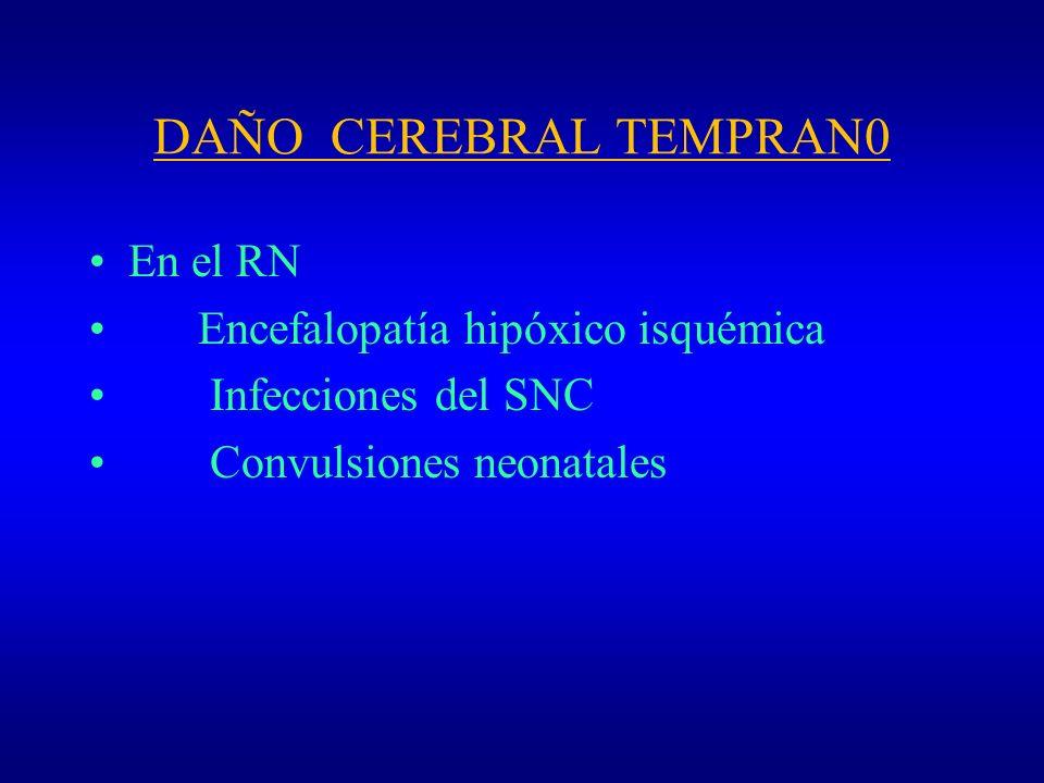 DAÑO CEREBRAL TEMPRAN0 En el RN Encefalopatía hipóxico isquémica