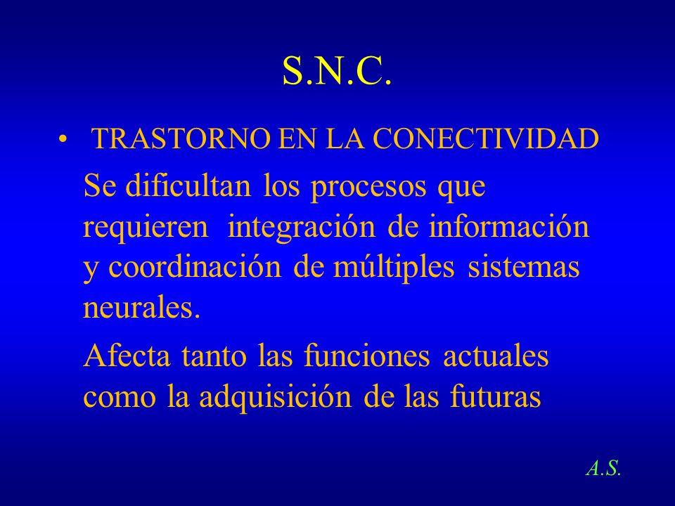 S.N.C.TRASTORNO EN LA CONECTIVIDAD.