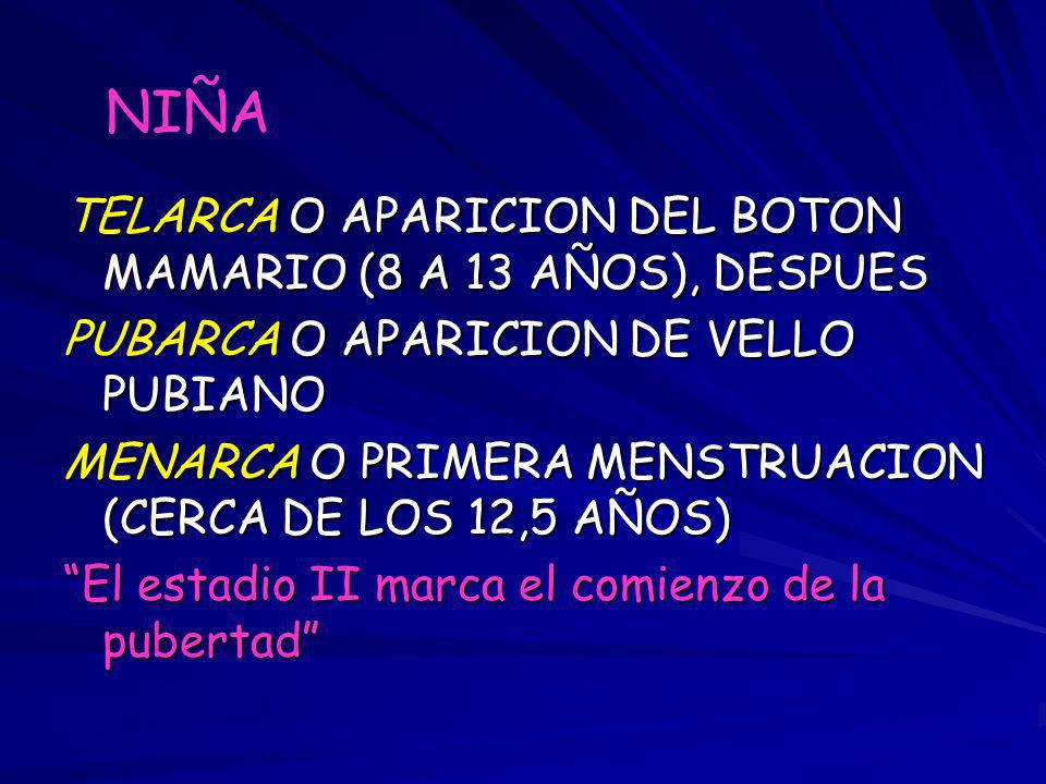 NIÑA TELARCA O APARICION DEL BOTON MAMARIO (8 A 13 AÑOS), DESPUES