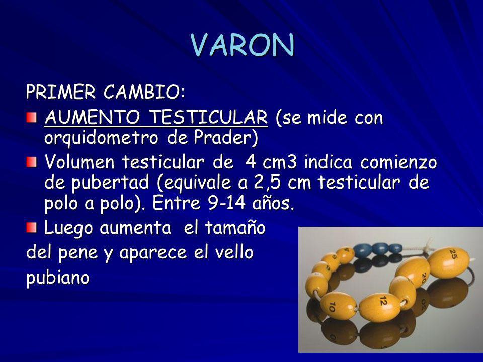 VARON PRIMER CAMBIO: AUMENTO TESTICULAR (se mide con orquidometro de Prader)