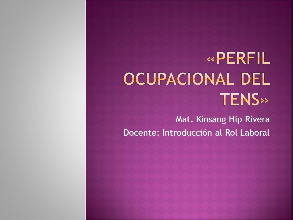 «perfil ocupacional del tens»