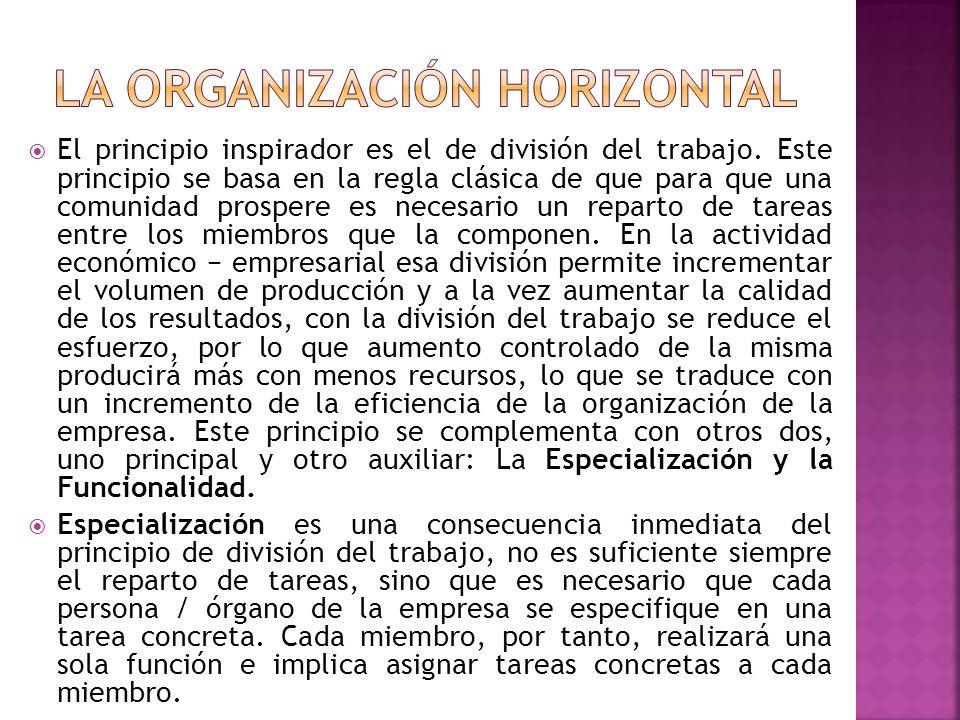 La Organización horizontal