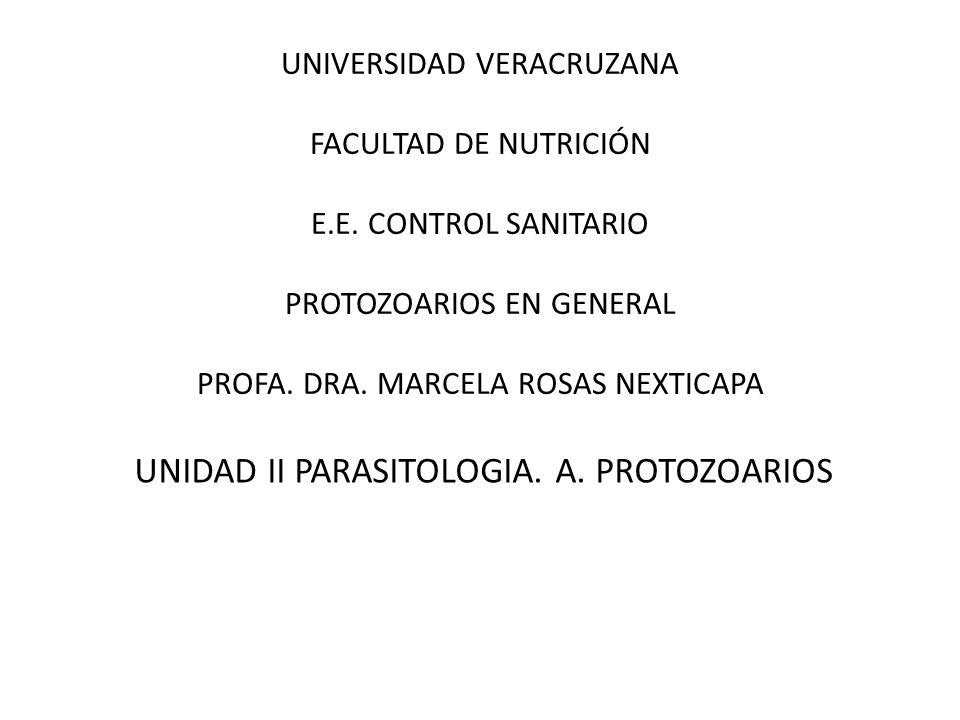 UNIDAD II PARASITOLOGIA. A. PROTOZOARIOS