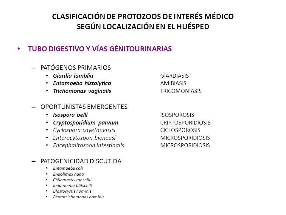 CLASIFICACIÓN DE PROTOZOOS DE INTERÉS MÉDICO SEGÚN LOCALIZACIÓN EN EL HUÉSPED