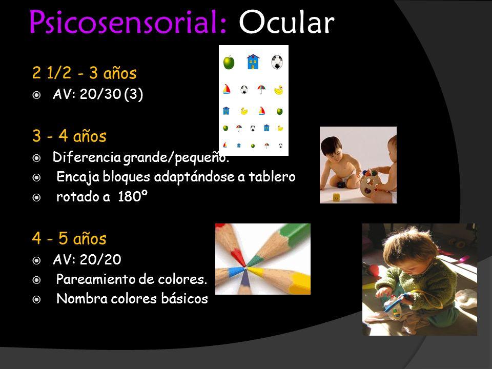 Psicosensorial: Ocular