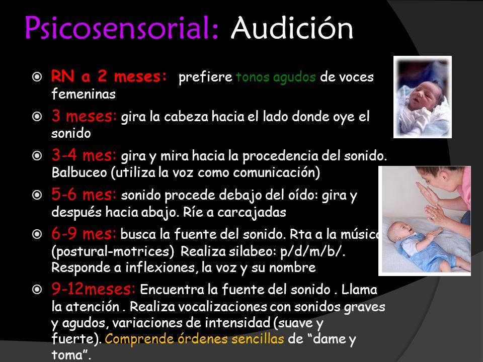 Psicosensorial: Audición