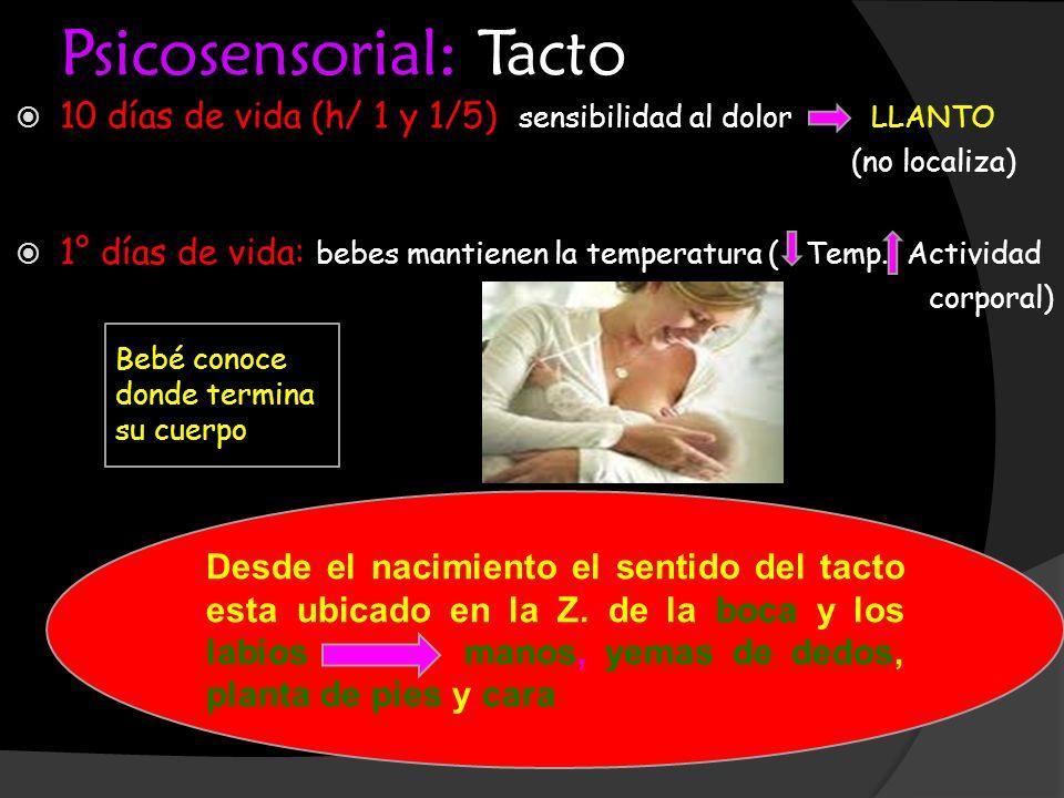 Psicosensorial: Tacto